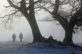 Winter walkers in the morning mist — Foto Stock