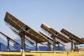 Солнечный завод — Стоковое фото