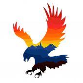Flying eagle with colorful sky — Stok Vektör