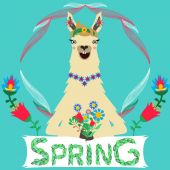 Funny smiling llama with flowers in hands — ストックベクタ