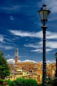 Sienna Italy — Stock Photo