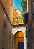 Sienna Italy Street Detail — Stock Photo