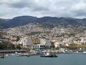 Madeirra — 图库照片