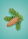Pine cone with branch — Stock Vector