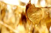 Goldenes blatt — Stockfoto