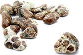Limestone Garnet — Stock Photo