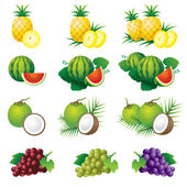 Pineapple, Watermelon, Coconut, Grape, Illustrate — Vector de stock