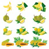 Banana, Durian, Mango, Papaya, Illustrate — Vector de stock