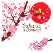 Cherry Blossoms or Sakura flowers with Bird on the Branch — 图库矢量图片