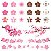 Cherry Blossoms or Sakura flowers Ornament — 图库矢量图片