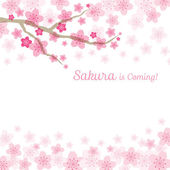 Cherry Blossoms or Sakura flowers Background — 图库矢量图片