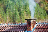 Smoking chimney at forest background — Stock Photo