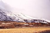 Icelandic fjords landscape — Stock Photo