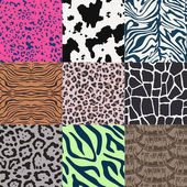 Animal print pattern — Stock Vector