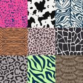 Dierlijke print patroon — Stockvector