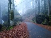 Alpine Road. Autumn in Val Masino-Italy — Stock Photo