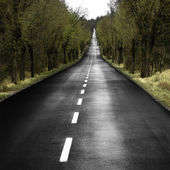 Lonely road — Stock Photo