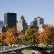 Montreal, Quebec, Canada, skyline on a beautiful Fall day,view from the Old Port — Stock Photo #58393557
