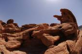 Sandstone sculptures, in Valley of Fire state park,Nevada,USA — Stock Photo