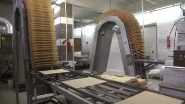 Waffles. Manufacture of wafers. Сonveyor line — Stock Video