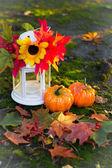 Herfst samenstelling — Stockfoto