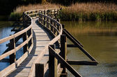 Tortuous bridge — Stock Photo