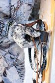 Ski binding for hunting ski — Stock Photo