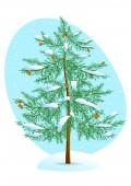Winter Pine. — Stock Vector