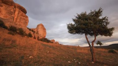 Juniper tree on a hill with clouds running above stone rocks — Stock Video
