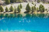 Deep blue lake reflection of green trees — Stock Photo