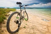 Bicycle on a bank of blue lake — Stock Photo