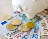 Euro banknotes and coins with piggy bank — Stock Photo