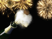 Champagne bottle and cork with firework — Stock Photo