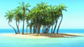 Palm trees on tropical beach — Stock Photo