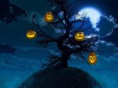 Halloween design - Forest pumpkins. — Stock Photo