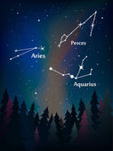 Zodiac in the night sky — Vector de stock