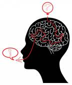 Silhouette de la tête avec un labyrinthe de cerveau — Vecteur