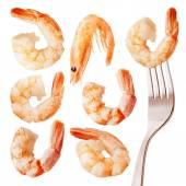 Shrimps isolated on white — Stock Photo