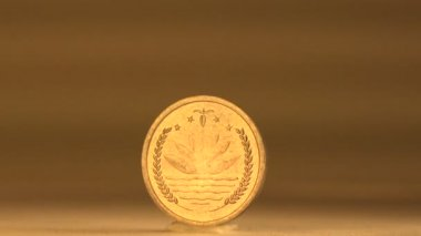 Bangladesh Penny — Stock Video