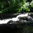 Water flows down creates rippling — Stock Video #61116355