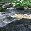 Water rippling over boulders — Stock Video #61116519
