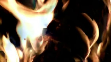 Campfire burning fast — Wideo stockowe