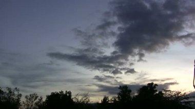 夜森の上空には暗雲 — ストックビデオ