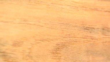 Anigre Wood background — Stock Video