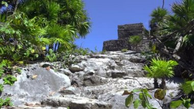 Mayan Ruins in Mexico — Stock Video