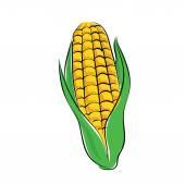 Ikona kolorowy wektor kukurydzy — Wektor stockowy