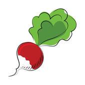 Rote Beete-farbigen skizzenhaften Vektor-Symbol — Stockvektor