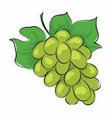Grapes Sketchy Colored Vector Icon — Stock Vector