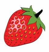 Strawberry Colored Sketchy Vector Icon — Stock Vector