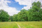 The beautiful landscape. — Stock Photo